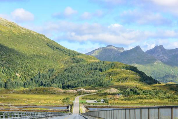 Road in Norwegian Mountains – Foto