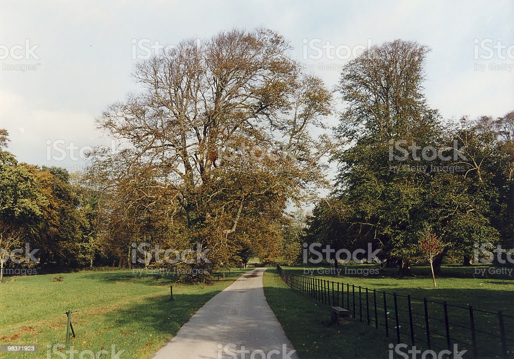 road in park royalty-free stock photo