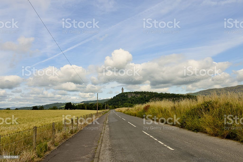 road in perspective, in the midst of fenced fields stock photo