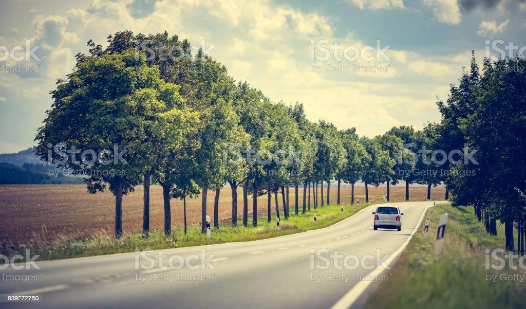 road in rural landscape – zdjęcie