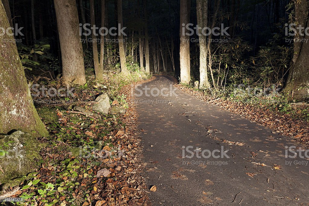 Road in Smoky Mountains royalty-free stock photo