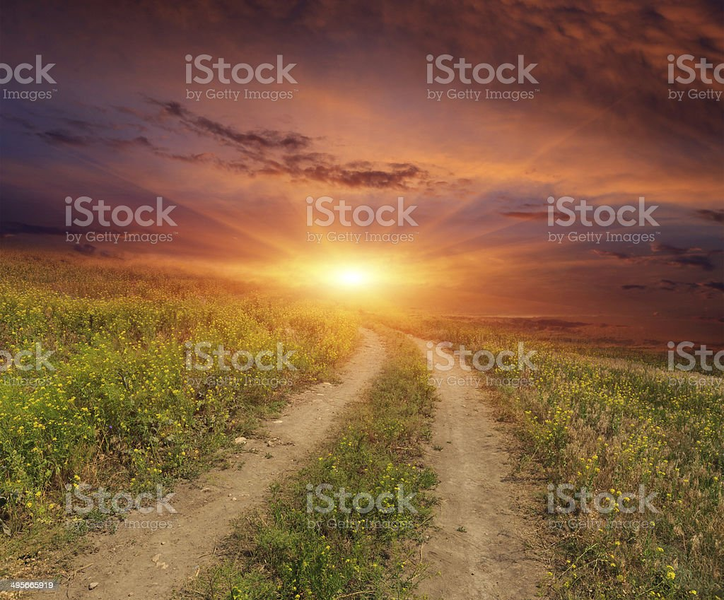 road in steppe on sunset royalty-free stock photo