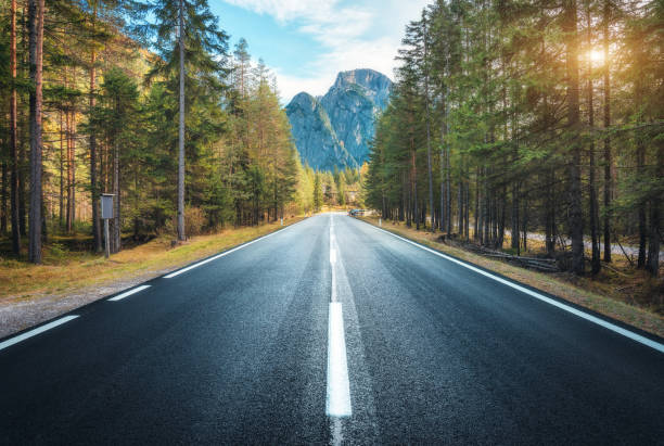 Road in summer forest at sunset in Italy. Beautiful mountain roadway, trees with green foliage and sunlight. Landscape with empty asphalt road through woodland, blue sky, high rocks. Travel in Europe stock photo