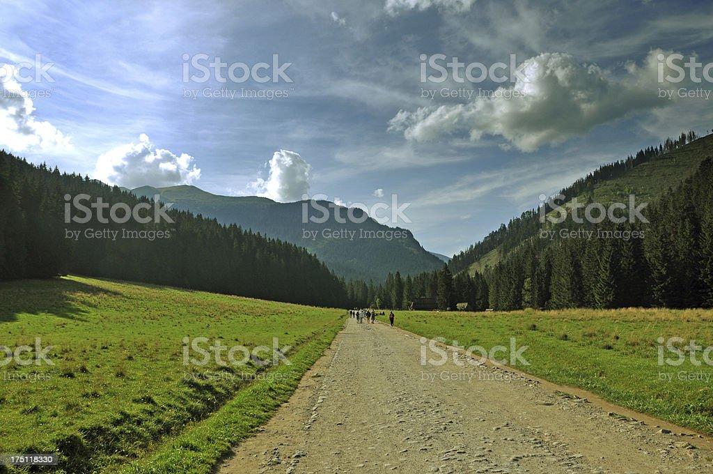 Road in Tatras, Zakopane, Dolina Koscieliska, Poland royalty-free stock photo