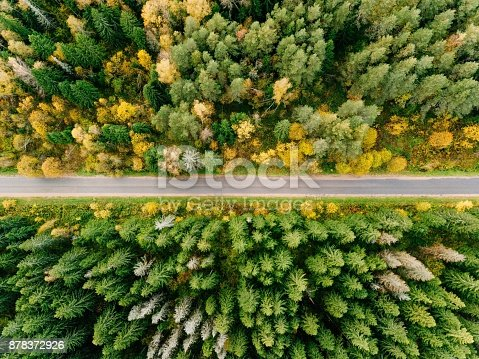 istock Road in the autumn forest aerial view 878372926