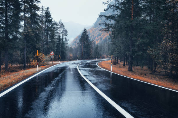 road in the autumn forest in rain. perfect asphalt mountain road in overcast rainy day. roadway with reflection and pine trees in italian alps. transportation. empty highway in foggy woodland. trip - den belitsky foto e immagini stock