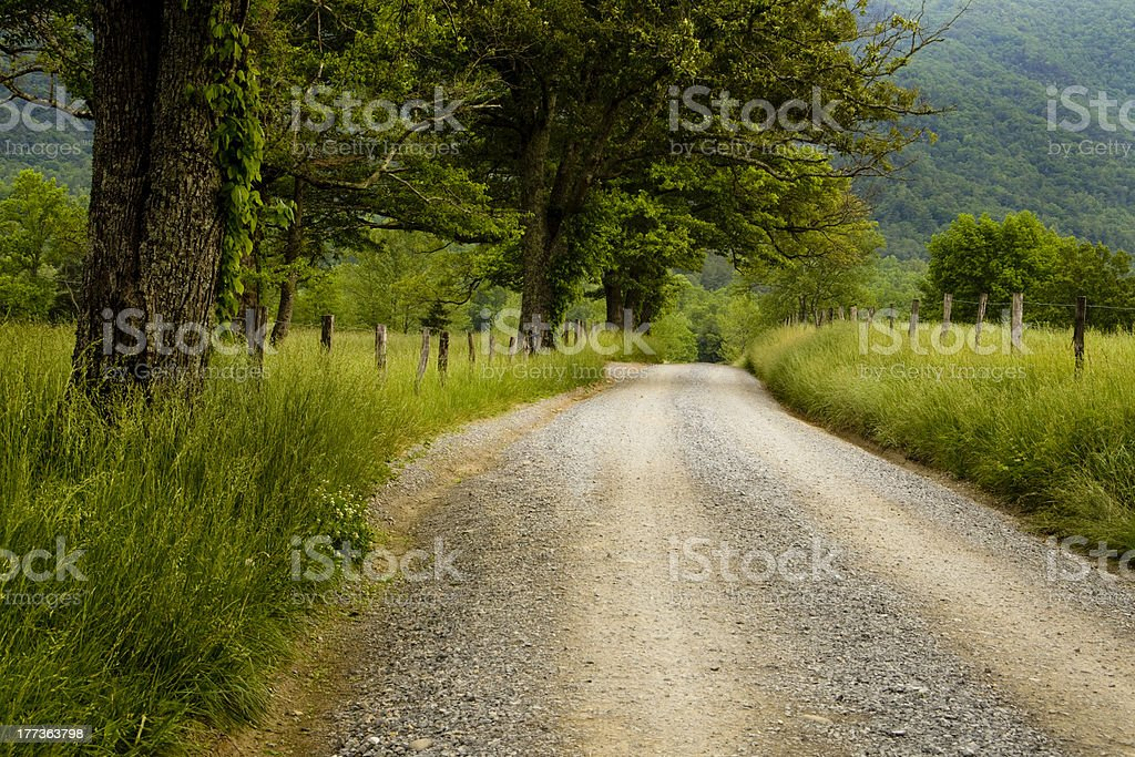 Road in the Country royalty-free stock photo