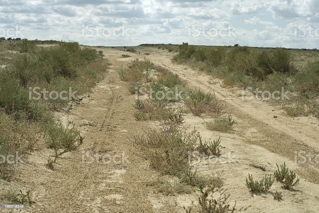 Road in the desert. royalty-free stock photo