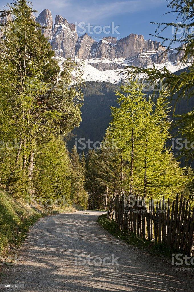 Road in the Italian Alps royalty-free stock photo