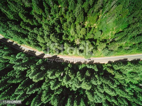 888361900 istock photo road in the middle of the forest 1149408029