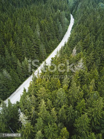 888361900 istock photo road in the middle of the forest 1149409013