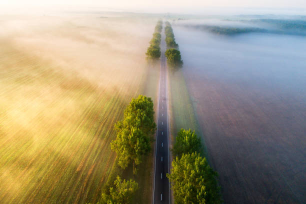 Road in  the morning Straight road in  the morning view from above. Transportation background. Beautiful aerial landscape with road in colorful fog. Misty autumn nature. straight stock pictures, royalty-free photos & images