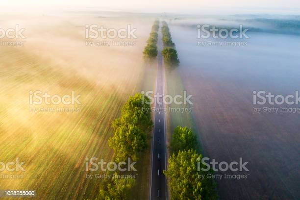 Photo of Road in  the morning