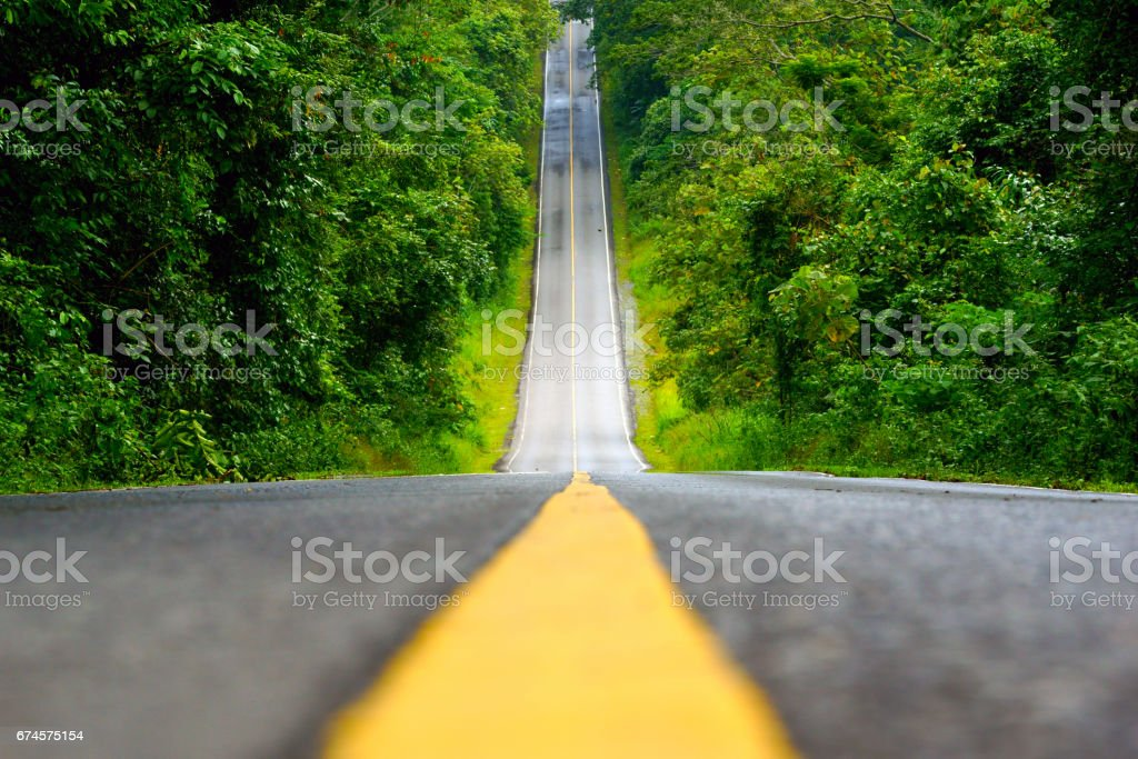 Road in the mountain of Khao Yai National Park, Thailand. stock photo