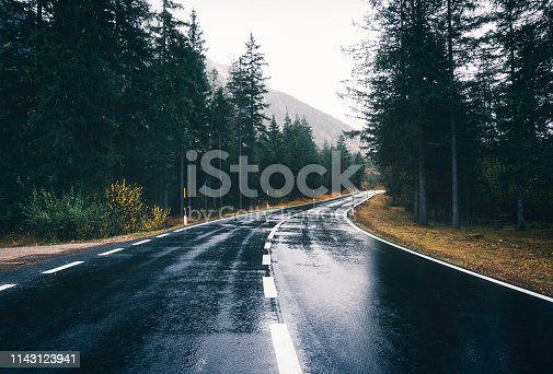 Road in the spring forest in rain. Perfect asphalt mountain road in overcast rainy day. Roadway with reflection and pine trees. Vintage style.  Transportation. Empty highway in foggy woodland. Travel