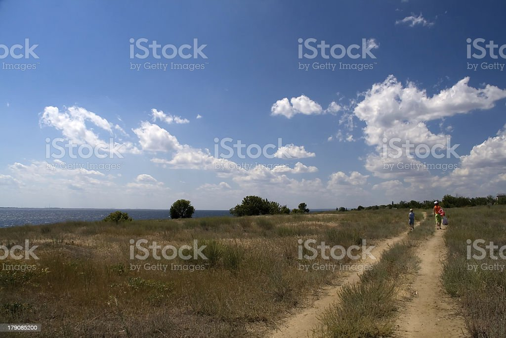 Road in the summer royalty-free stock photo