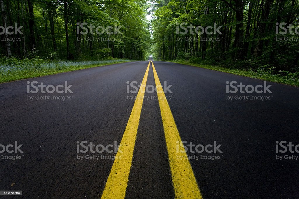 Road in the woods royalty-free stock photo