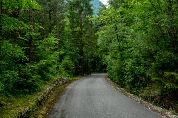 Road in Triglav National Park stock photo