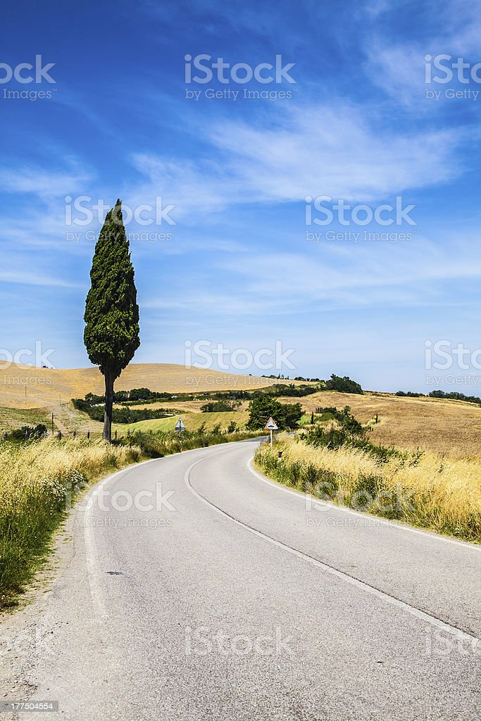 Road in Tuscany royalty-free stock photo