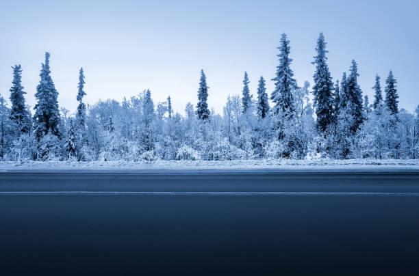 road in winter forest – Foto