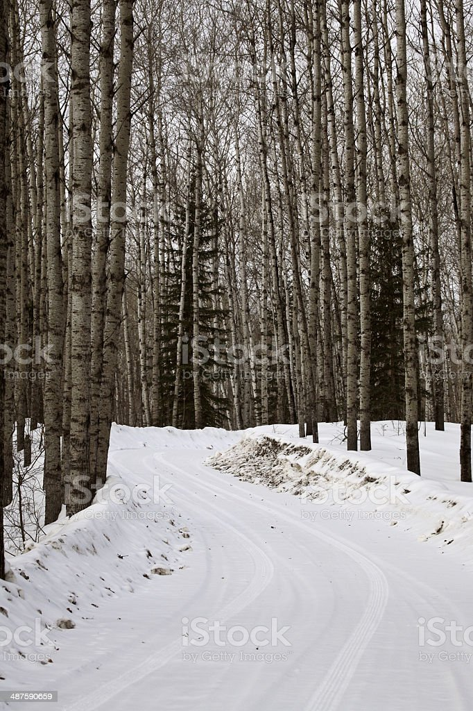 road into lake front in winter stock photo