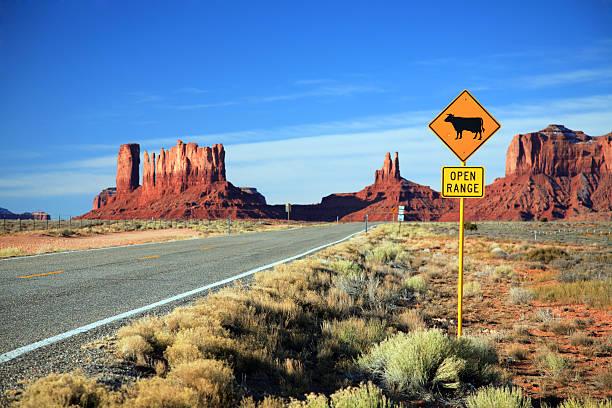 road into monument valley - arizona highway signs stockfoto's en -beelden