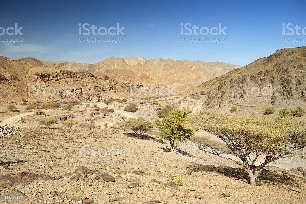 Road into the Danakil Desert, Ethiopia stock photo