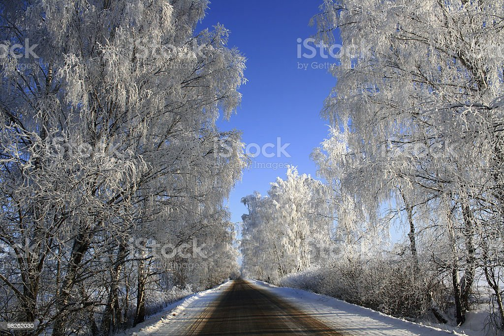 road into winter royalty-free stock photo