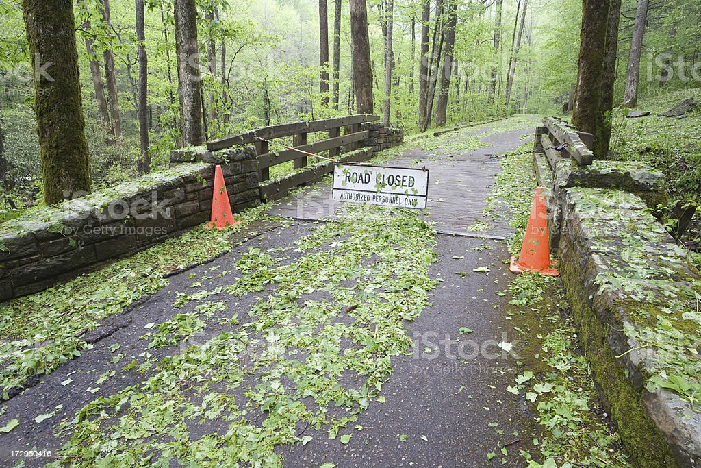 Road is closed in the woods royalty-free stock photo