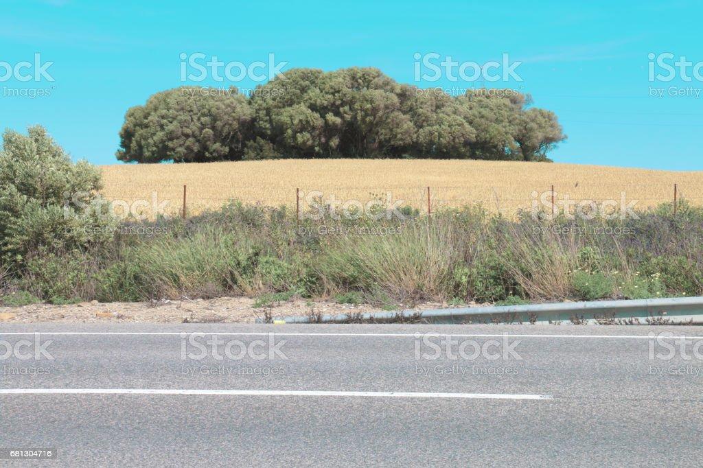 Road landscape royalty-free stock photo