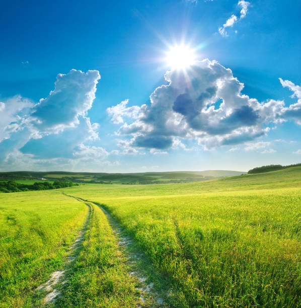 Road lane and deep blue sky. Nature design. stock photo