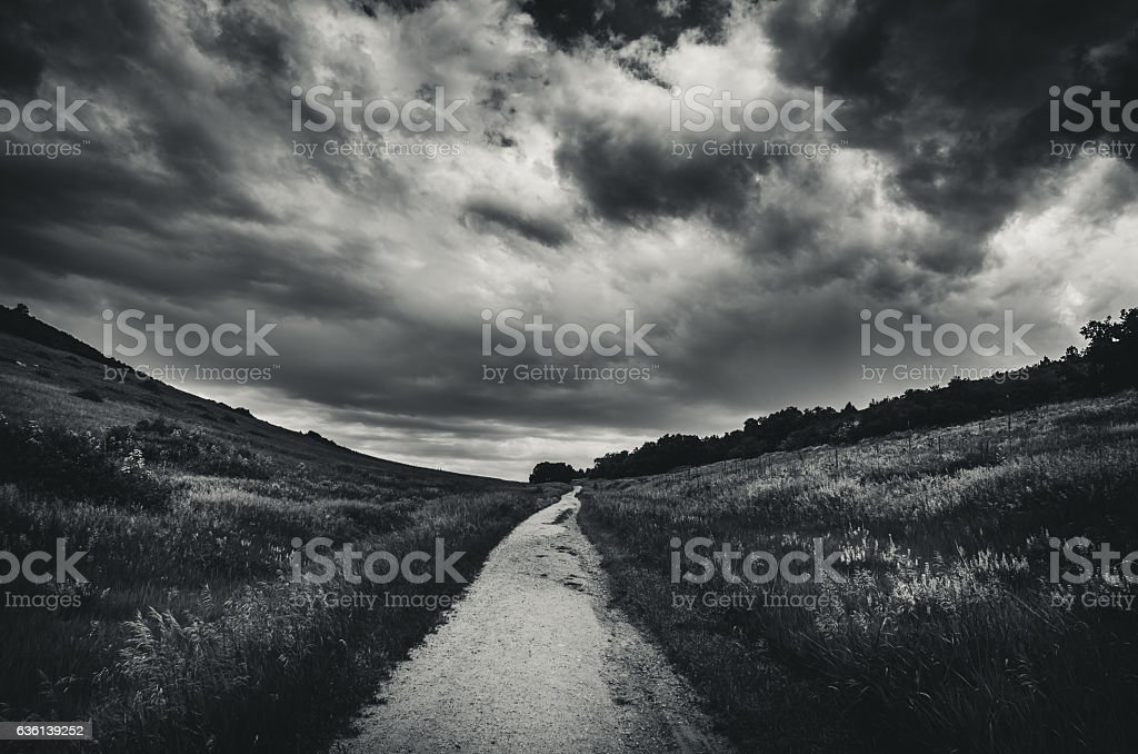 Road leading into a grassy field before a storm. - foto de stock