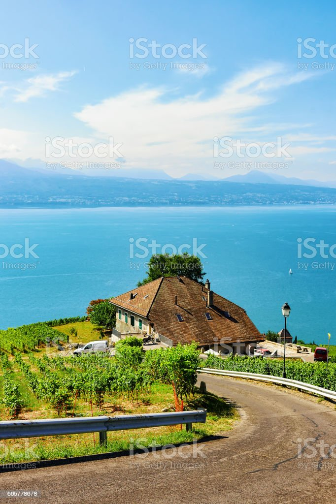 Road leading to Lavaux Vineyard Terraces hiking trail in Switzerland stock photo
