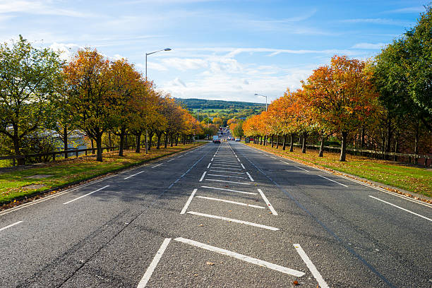 uk road lined with autumn trees - gateshead stock photos and pictures