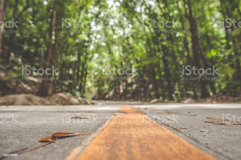 Road Marking Close Up stock photo