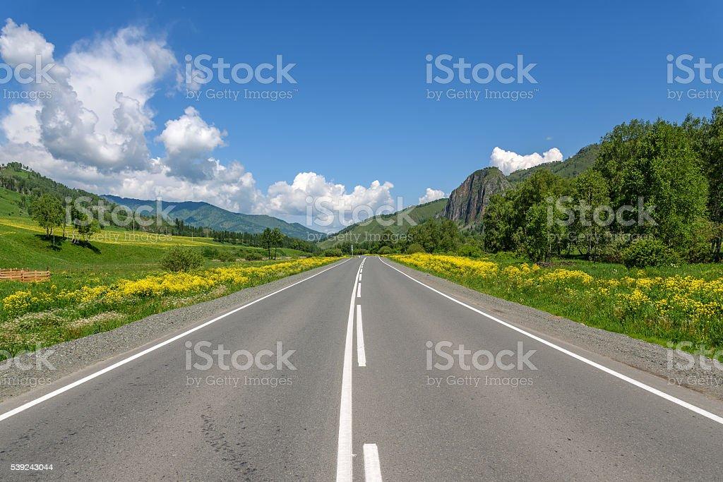 road mountains sky asphalt flowers royalty-free stock photo