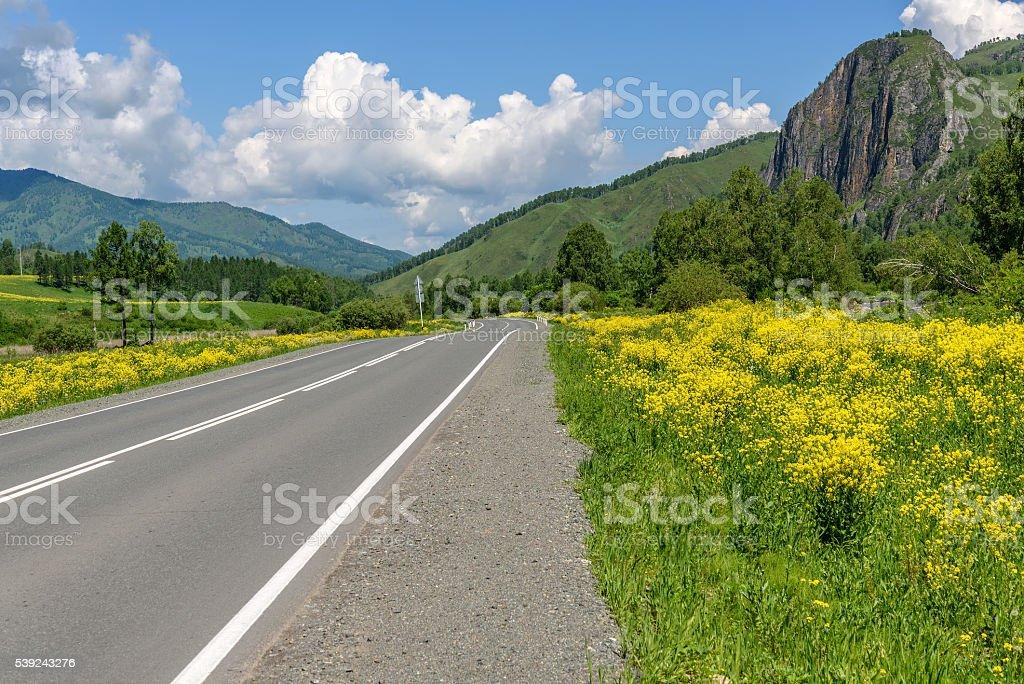 road mountains sky asphalt flowers foto de stock libre de derechos