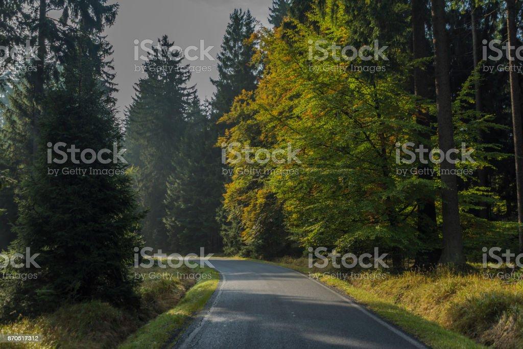 Road near Kladska village in Slavkovsky national park stock photo