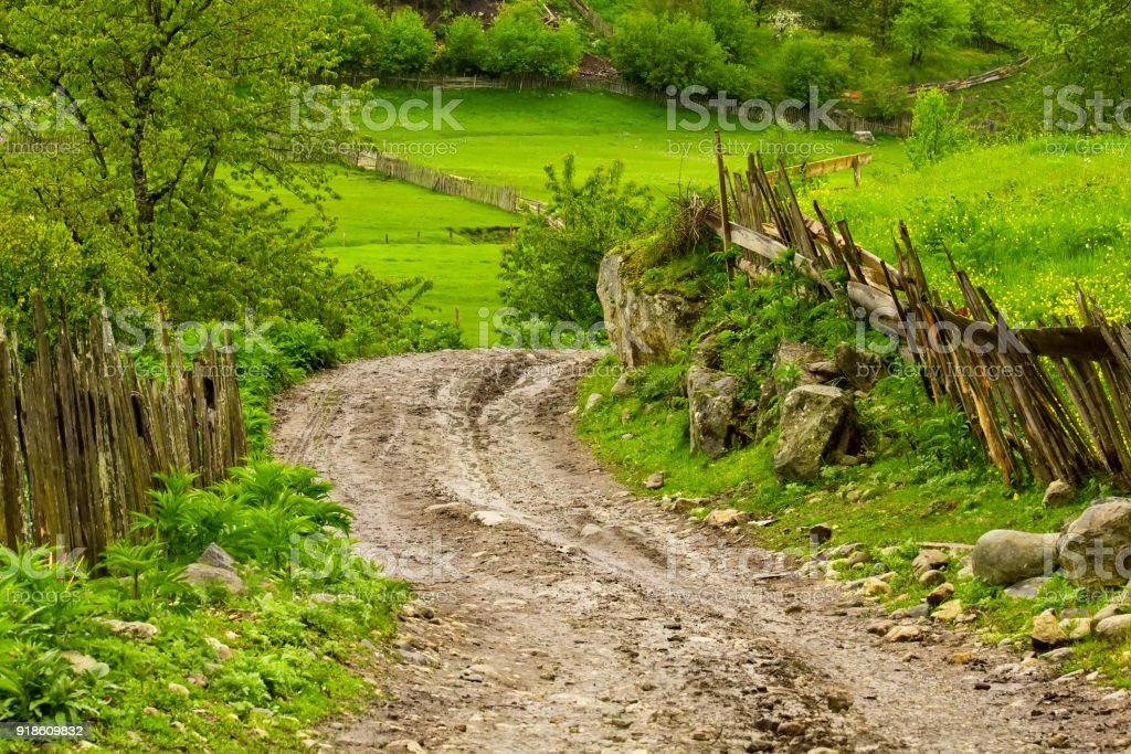 Road of stone in small mountain village in Georgia, bright spring background stock photo