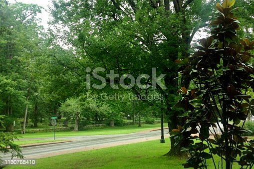 istock A road on a rainy day in the American South 1130768410