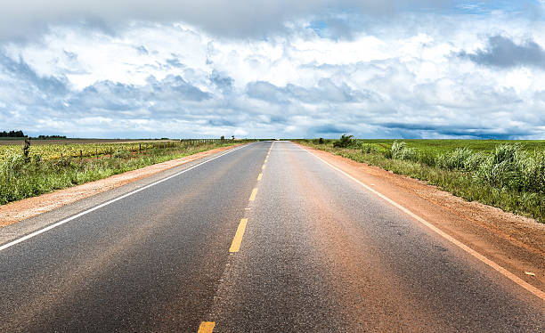 Road on a remote area in Brazil Road on a remote area in Brazil goiás city stock pictures, royalty-free photos & images