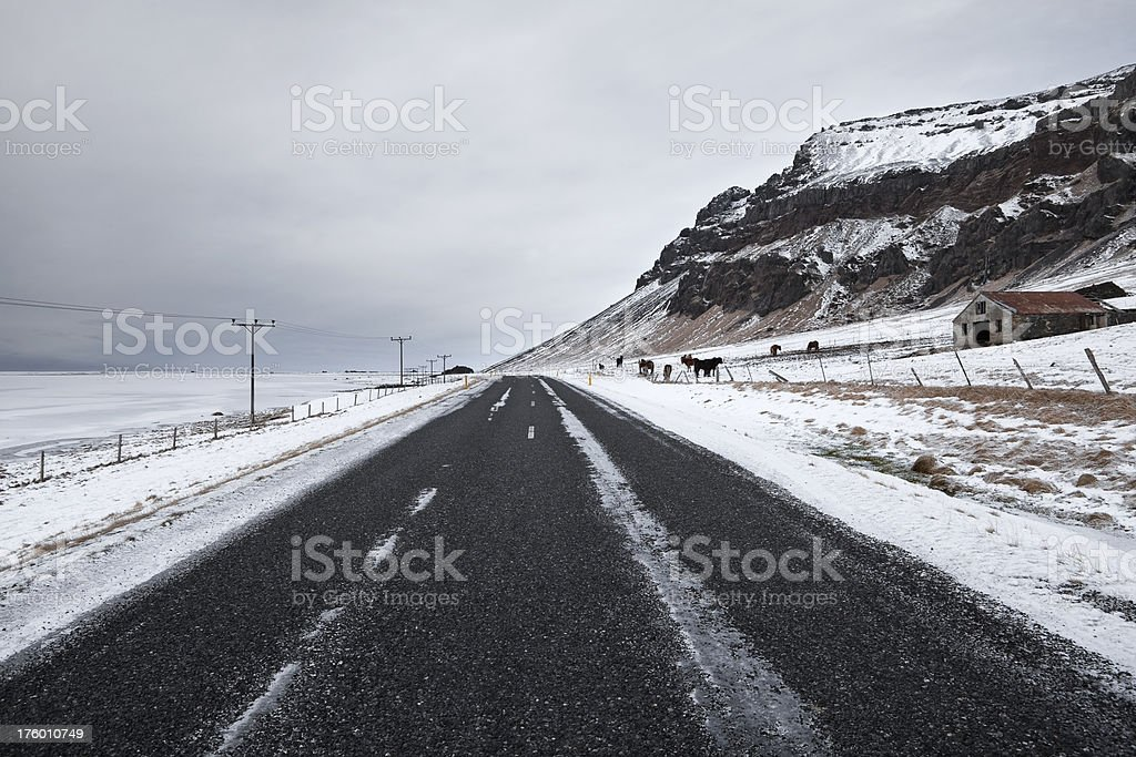 Road on overcast day in Iceland in winter royalty-free stock photo