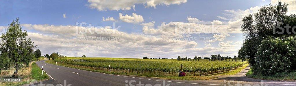 Road pano royalty-free stock photo