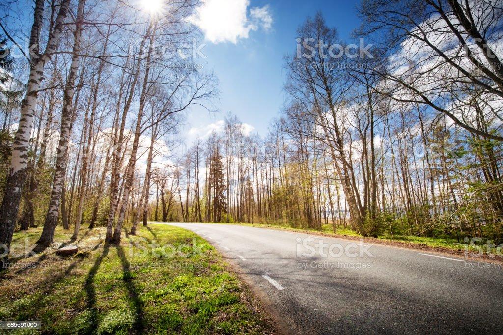 Road panorama on sunny spring evening 免版稅 stock photo