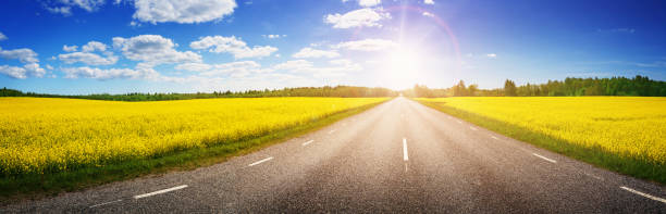 Road panorama on sunny summer day in countryside stock photo