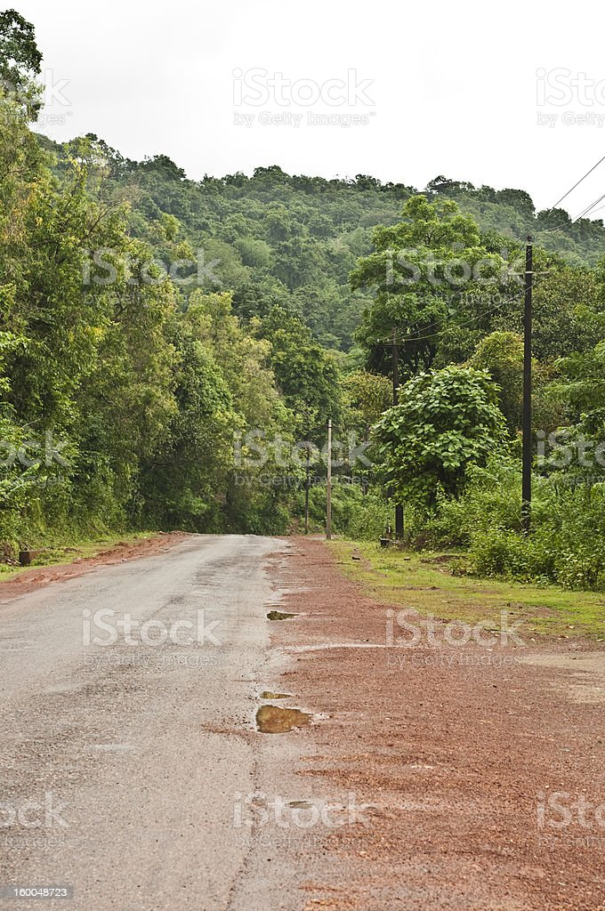 Road passing through dense forest royalty-free stock photo