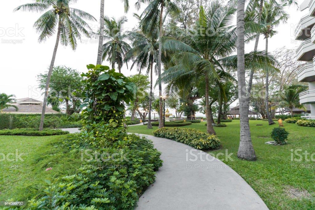 Road pathway outdoor with Nature garden sunlight stock photo