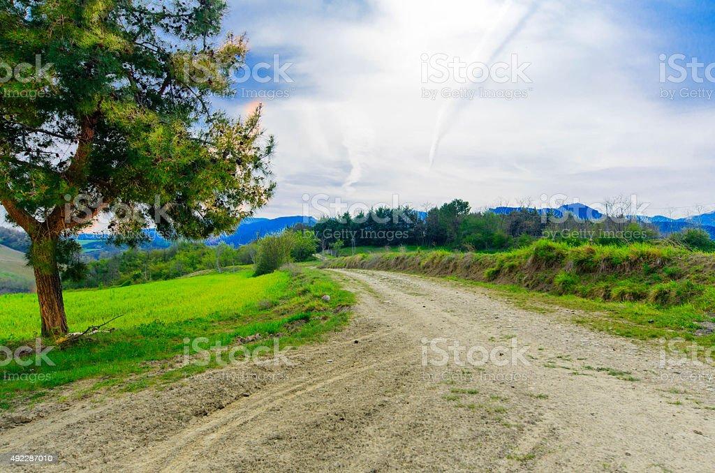 road schoose stock photo