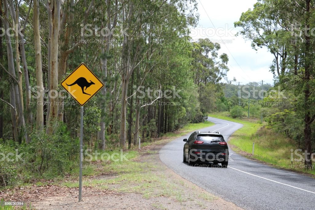 Road sign beware kangaroo on the roadside, Australia stock photo