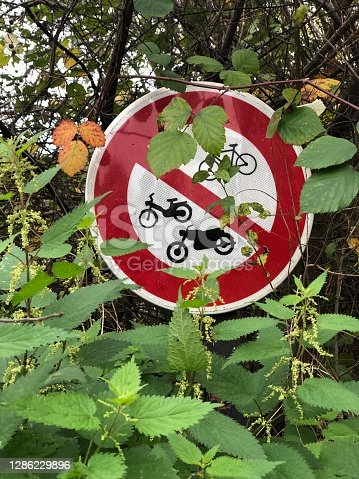 road sign in the thicket of nettles